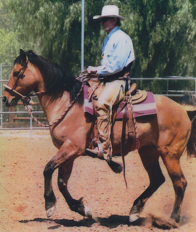 Iberian Peninsula Horsemanship, the Myth of the Moors' Influence on Riding and the California Vaquero-style Bridle Horse